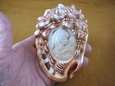 (C1443-K) Sea shell carved Italian Lady with flowers CAMEO Helmet conch shells