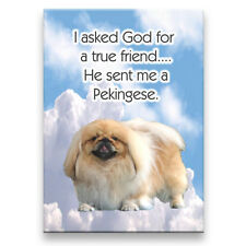 Pekingese True Friend From God Fridge Magnet New Dog