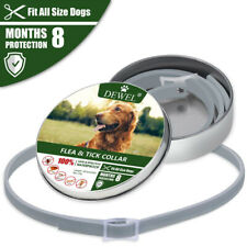 Seresto Dogs Cats Up To 8 Month Flea Tick Collar pet supplies glowing dog collar