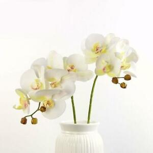 45CM Home Decor DIY Artificial Fake Silk Flower Phalaenopsis Orchid H6P7