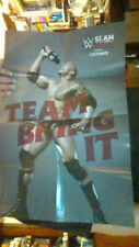 """WWE The Rock Team Bring It Poster 