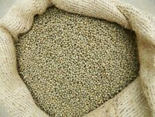 Kenya Karani Peaberry Coffee Beans Green Unroasted Whole Bean / Ground 5 LBS