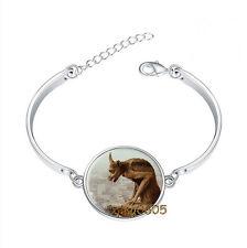 Natre Dame Gargoyle Bracelet Photo Glass Cabochon Tibet silver Bracelets