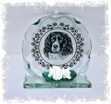 More details for springer spaniel dog cut glass round plaque collectable  keepsake unusual #8