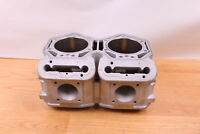 SKI-DOO SUMMIT MXZ 800 P-TEK CYLINDERS /  JUGS MONOBLOC  --Replated--