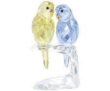 Swarovski Crystal BUDGIES BIRDS  5004725