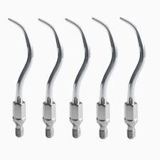5PCS Dental Ultrasonic Multifuction Scaler Tips Fit KAVO AMDENT GK1