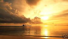 "LARGE GOLDEN SUNSET BEACH BEAUTIFUL SEASCAPE 36""x 20"""