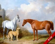 Grey & Chestnut Hunter Horse W Deerhound Dog Oil Painting Art Real Canvas Print