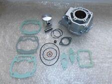 Zylinder Kit mit Kolben und Dichtsatz Aprilia RS 125 Rotax 123 Neu Inst. #345