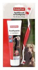 Beaphar Brosse à dents & Dentifrice pour de Chien, Foie Goût Anti-Plaque