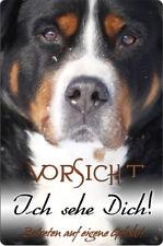 Großer SCHWEIZER Sennenhund - A4 Alu Warnschild Hundeschild SCHILD - GSS 01 T5
