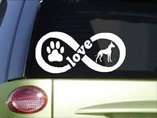 Great Dane Infinity sticker *H397* 4 x 8.5 inch vinyl dog love decal