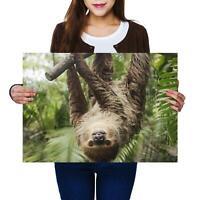 A4 BW Jungle Elephant Wild Animal Poster 29.7X21cm280gsm #42301