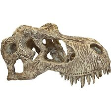 Komodo T-Rex Skull Large Dinosaur Ornament 82945 reptile hide gecko snake