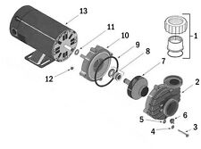Dura-Jet Spa Pump DJ Series Seal Plate O-ring 35505-7430 0-231