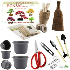Bonsai Tree Kit Grow Your OWN Bonsai Trees from Seeds & Bonsai tool Kit & pots