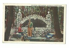 1940's Postcard The Spring Camp Nawakwa Biglerville PA
