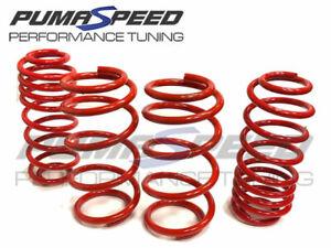 Pumaspeed Stance Lowering Springs Fiesta Mk8 ST-Line Petrol Diesel