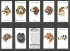 "PLAYER 1929 INTRIGUING ( DOGS ) FULL 50 CARD SET """"  DOG HEADS  """""