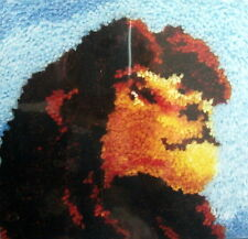 "MCG TEXTILES LATCH HOOK    RUG/PILLOW  KIT "" LION KING"""