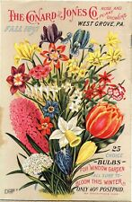 wall décor Various flowers from Fall catalog of bulbs, roses and other beautiful