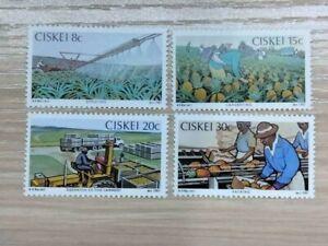 Ciskei 1982 Pineapple Industry. 4 stamp set MNH sg:26-29