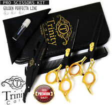 """Professional Barber Hairdressing Scissors and Haircutting Thinning 6.5"""" Japanese"""