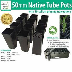 50mm Native Square Black Plastic Tube Pots with/without Trays. For propagation