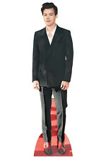 Styles Harry Red Shoes Mini Cardboard Cutout / Standee / Standup