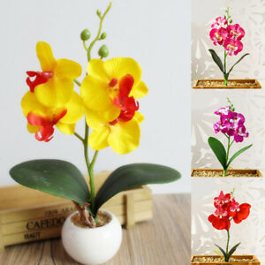 1PCPhalaenopsis simulation Flower Bouquet Artificial FlowersButterfly Silk Decor