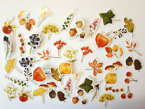 Herbsttag 46 Sticker Set Aufkleber herbst Früchte Beeren Pilze basteln bujo diy