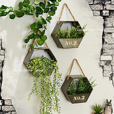 Metal Hanging Plant pot wall mounted Flower basket Window wall Decor hexagonal