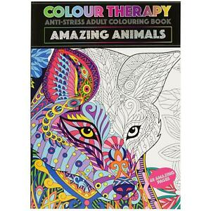 Colour Therapy Colouring Books for Kids Adults A4 Size Children Craft Draw Fun
