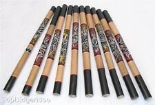 Aboriginal Digeridoo REPTILE DOT PAINTED Free World Ship+Bag+Beeswax Mouthpiece