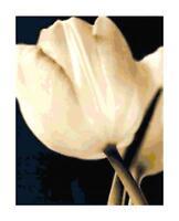 Sepia Tulip Flower Handmade DIGITAL Counted Cross Stitch Pattern Needlepoint