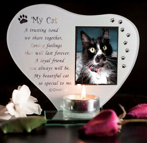 Cat Photo T Light Pet Memorial plaque Personalised with Pets Name My Cat #1