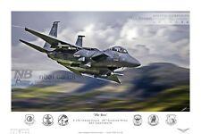 48th Fighter Wing F-15E Strike Eagle, RAF Lakenheath Digital Artwork