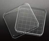 15 x 90mm Square petri plate/dish with numbered 13x13mm grid NEW STERILE