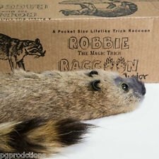 JUNIOR ROBBIE THE RACCOON Small Magic Trick Spring Animal Puppet Prop Toy Jr Gag