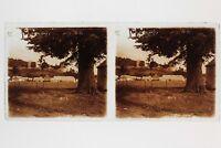 Village Francia Placca Da Lente Stereo Vintage 6x13cm