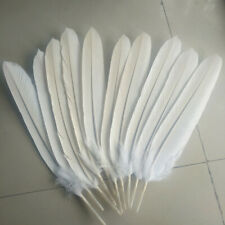 Single Natural White Exotic Eagle Feather Huge 45-50cm Vase Craft Quill Decor