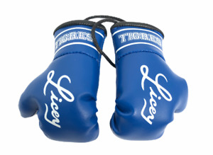 Licey mini boxing gloves
