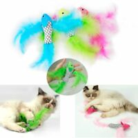 New Pet Cat  Feather Teaser Catnip Plush Toys Interactive Fish Shape Scratch Toy