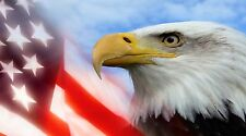 "Patriotic Bald Eagle American Flag- 42"" x 24"" LARGE WALL POSTER PRINT NEW."