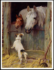 Jack Russell Wire Fox Terrier And Horses In Stable Lovely Dog Print Poster
