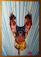 Wolverine X-Men Marvel Comics Poster by Jim Lee