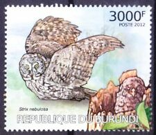 Great Grey Owl, Birds of Prey, Burundi 2012 MNH
