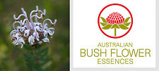 FIORI AUSTRALIANI Grey Spider Flower TERRORE-PANICO/Fede Calma Coraggio 30 ml