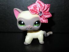 "Littlest Pet shop Chat Europeen/ Short Hair Cat Kitty # 1116 "" Authentic """